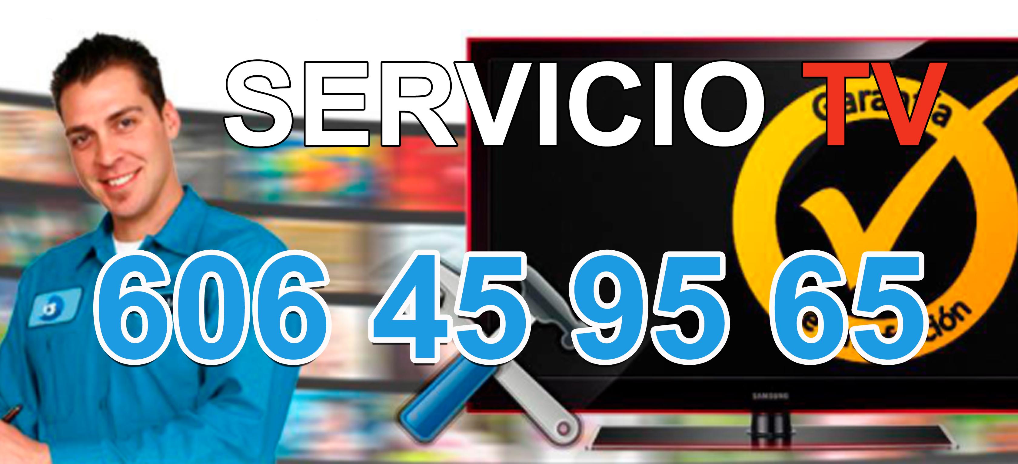 Reparaciones de Televisiones La petxina en domicilios y locales.
